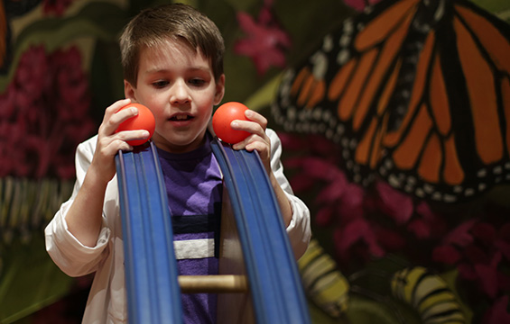 A young boy plays with the tracks and balls at the Science Centre.