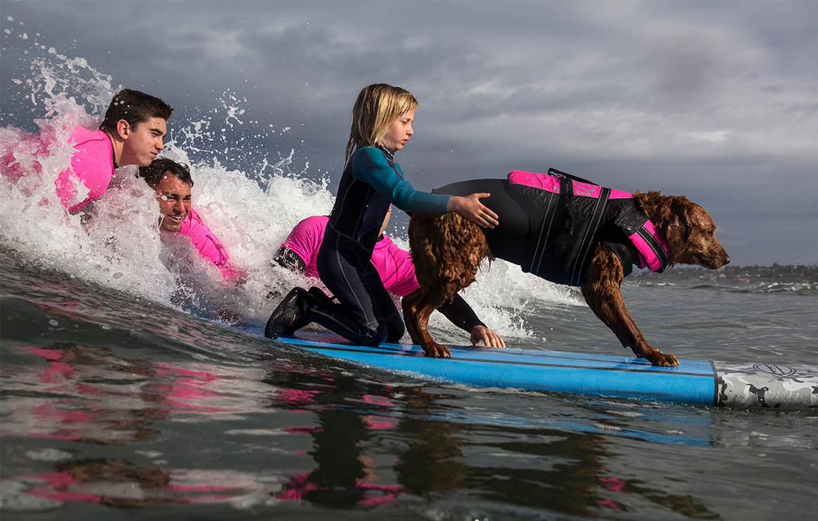 A dog and a girl on a surf board.