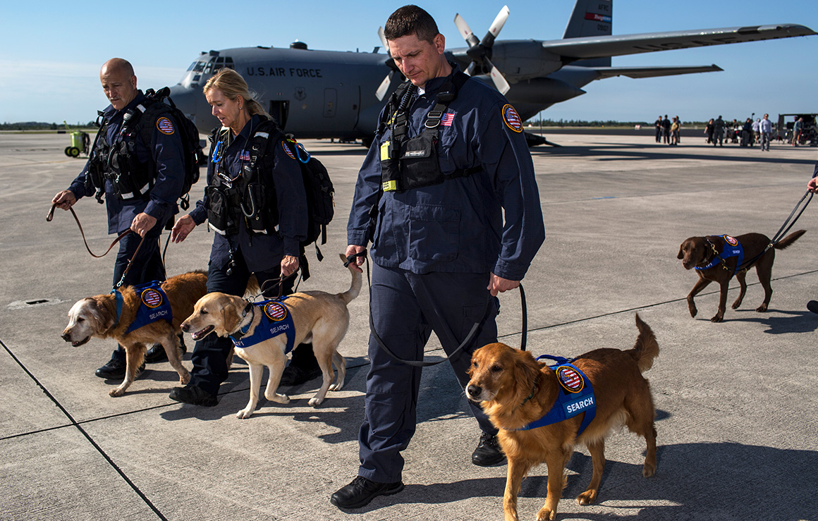 Armed Forces members and their dogs.
