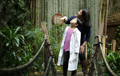 A child and adult enjoy the rainforest in the Living Earth.
