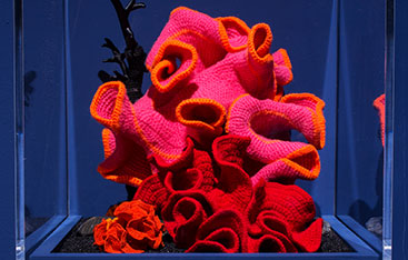 Crocheted coral.