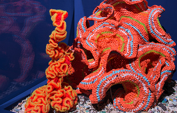 An exhibit from Crochet Coral Reef.